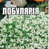 Лобулярія біла